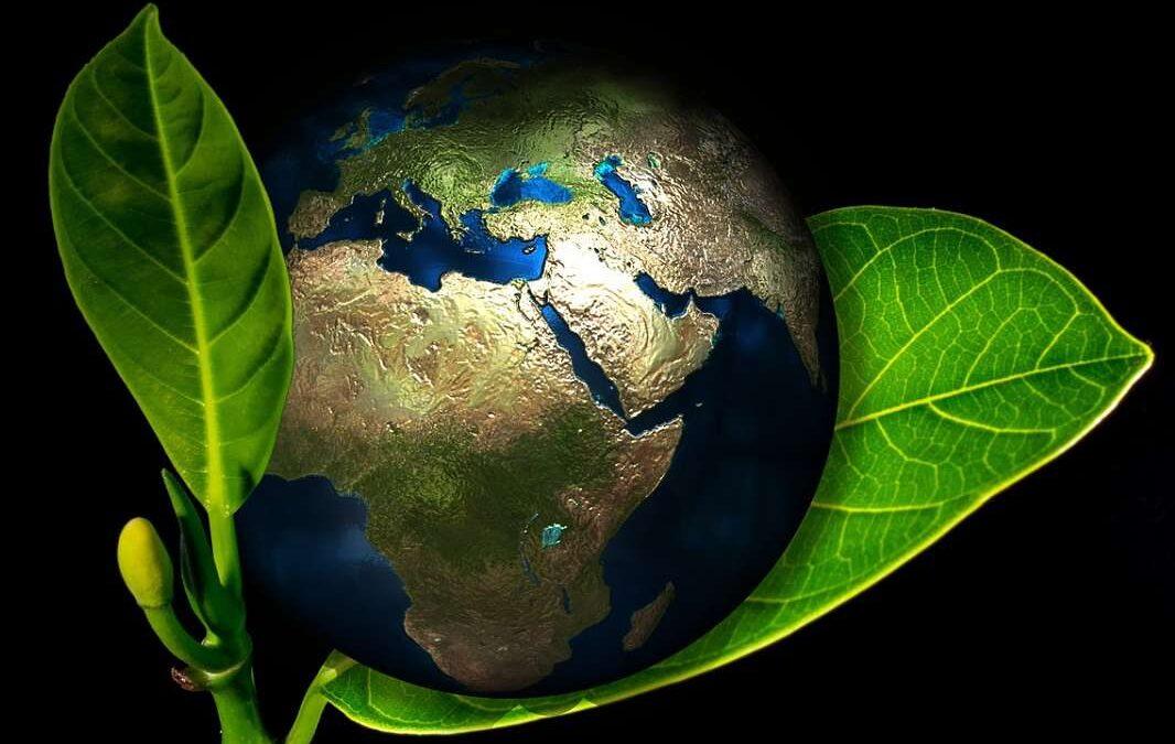Formulují se ideové základy eko-diktatury k záchraně planety
